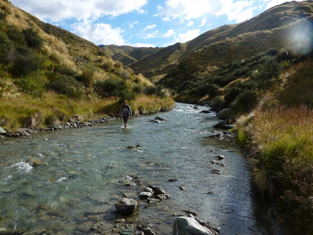 The river running through Arrowtown is said to have some remnants of gold left. Most heartbreaking sentence ever written.