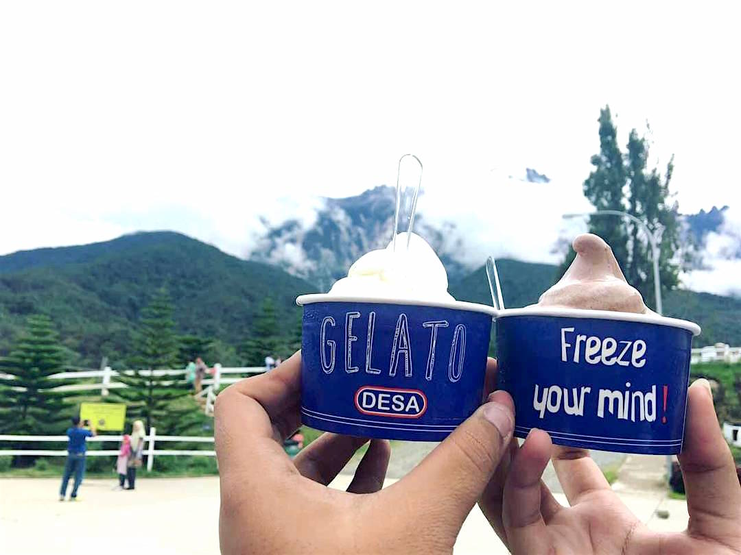 The best thing to have while you're at a cattle farm? Fresh gelato of course!