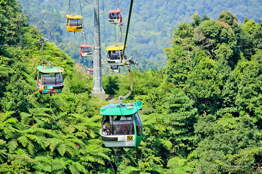 23 - Colourful cable cars that overlook a century-old tropical rainforest